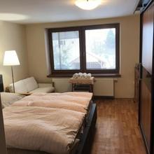Apartmán pod Lysou Frýdlant nad Ostravicí 46680872