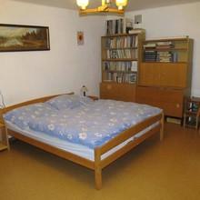 Ubytování na Cukrmandlu Boršov nad Vltavou 47434966