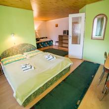 Penzion Zelený Dom Vitanová 48401078