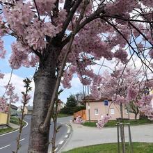 Apartmány Na Vršku Plzeň 48557672