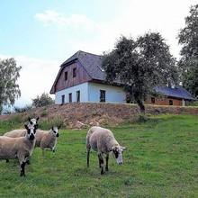 Penzion pod Čeřínkem Mirošov 1125935707