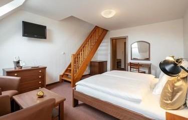 Rodinný pobyt v Krušných horách na 3 noci-Pytloun Wellness Hotel Hasištejn 1155090871
