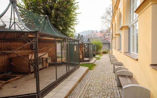 Rehabilitační ústav Brandýs nad Orlicí 1152100887