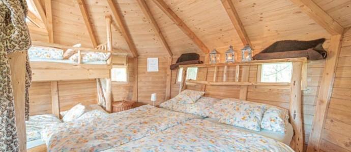 Tree houses Sněžník Dolní Morava 1137484677