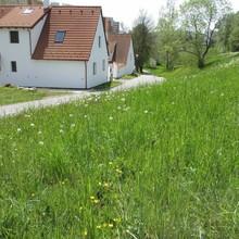 Apartmány U Procházků Český Krumlov