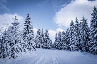 Strážný-pobyt-Zimní šumavské radovánky na 3 noci