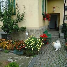 Vila Miluška Černá Voda