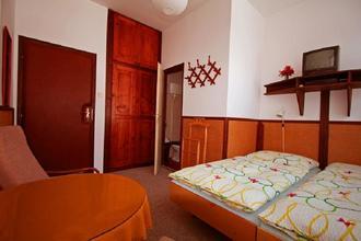 Pension Villa Ludmila Janské Lázně 42461436