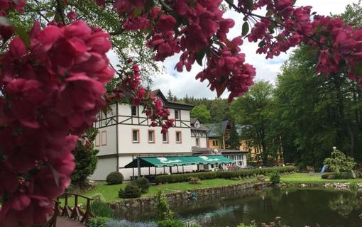 Spa Hotel Harmonie 1155798735