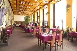 Hotel Piast Český Těšín 33330926