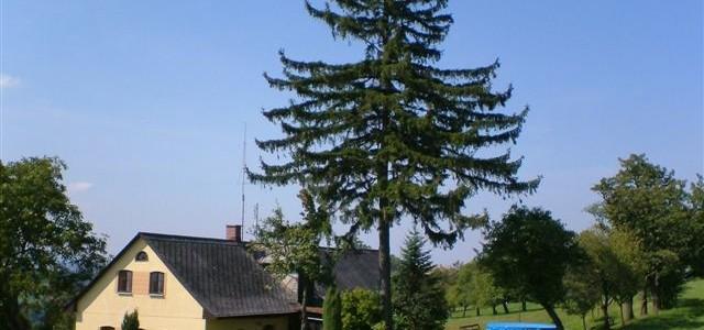Chalupa u Vyšanských Víchová nad Jizerou