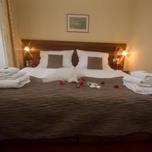 Hotel Hejtmanský dvůr Slaný 41270870