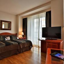 Hotel Belvedere Praha 41314060
