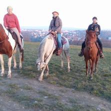 4 dny u koní pro začátečníky