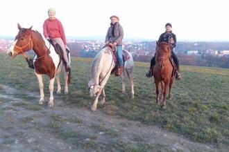 Všední dny s koňmi pro pokročilé-Hotelový RESORT STEIN