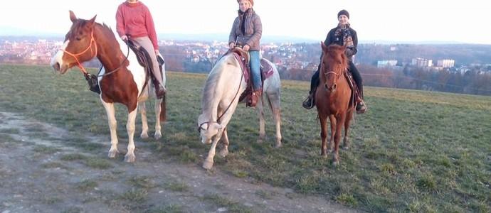 Hotelový RESORT STEIN-Cheb-pobyt-Všední dny s koňmi pro pokročilé