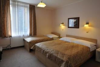 Hotel Wilhelm Praha 44514524