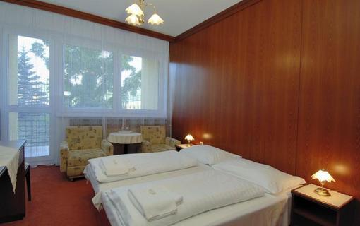 Lázeňský & wellness hotel Niva Pokoj Standard ***