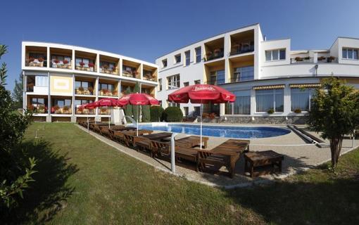 Lázeňský & wellness hotel Niva 1154300429