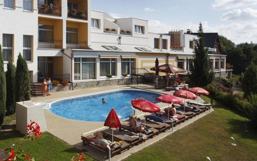 Lázeňský & wellness hotel Niva 1154300431