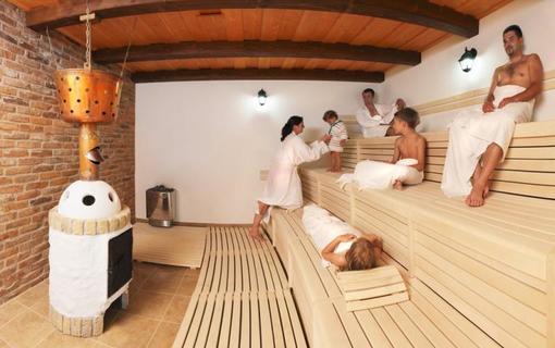 Lázeňský & wellness hotel Niva Wellness centrum - lesní sauna