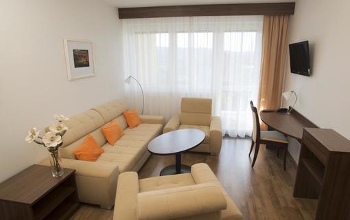 Lázeňský & wellness hotel Niva 1154300411