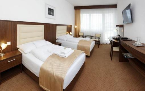 Lázeňský & wellness hotel Niva 1154300407