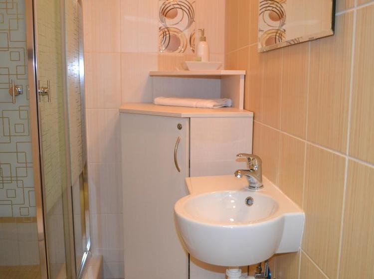 Sprchový kout a umyvadlo v pokoji č.5