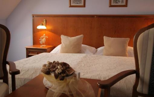 Hotel Octárna Dvoulůžkový pokoj standard