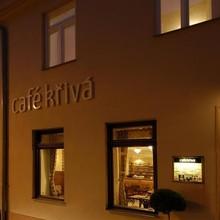 Pension Křivá Olomouc 1133473559