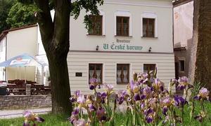 Penzion a hostinec U České koruny penzion
