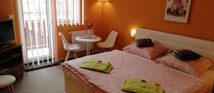 Three Apartment Františkovy Lázně 1154302893