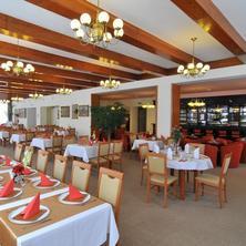 Hotel Mánes Svratka 36142196