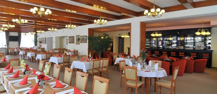 Hotel Mánes Svratka 1128679193