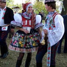 Dubňany